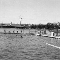 Image of UNRS-P1999-12-19 - [This] picture shows a portion of Reno's splendid municipal swimming pool situated in Idlewild Park. PWA joined with the city in its construction.