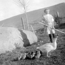 Image of UNRS-P2000-06-0127 - Photograph of a girl with a goose and goslings standing outside on the Caughlin Ranch, near the current intersection of Mayberry and McCarran with what is now Plumb Lane in the background. Handwritten on verso: Syrene Caughlin.  Reno, Nevada. 1910.