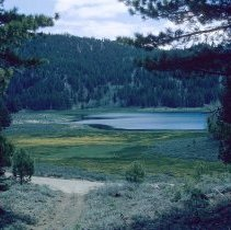 Image of UNRS-P2003-10-393 - Spooner Lake.  Typical wet meadow in Tahoe area.