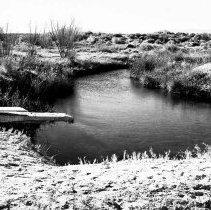 Image of UNRS-P1985-08-00277 - Photograph of Ash Meadows-Big Spring; Dec. 31, 1947 (neg. 4x5) Folder 12.