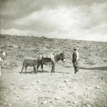 Image of UNRS-P2012-10-061 - [Man with burro and foal.]