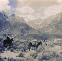 Image of UNRS-P2004-18-218 - Photograph of two unidentified men with horses in desert landscape with moutains in the background.