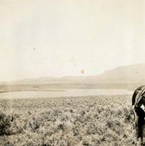 Image of UNRS-P2710-4662 - Photograph of the dry Summit Lake bed and the rear of a horse. Caption on image: Photographic supplement accompanying letter of June 3d, in re complaint of Nick Mauwee regarding the water and irrigation matters on Summit Lake [1920; photos numbered 4662 through 4673]. Three separate exposures made from the same point on the south bank of Summit Lake near the proposed tunnel side of the Munroe project. This panorama gives a very good idea of Summit Lake and the surrounding country. The background of the photographs looks toward the east and the Indian allotments are on the level land shown thereby. [1 of 3]