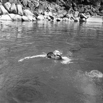 Image of UNRS-P1985-08-35435 - National Science Foundation; Desert Research Institute; Skunk Harbor, Lake Tahoe; July 13-14, 1964 (neg. 2x2) [Diver]