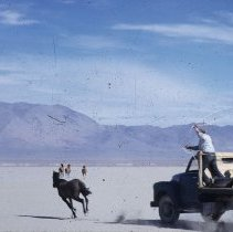 Image of UNRS-P1985-08-41151 - Wild horse round-up. Color slide.