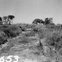 Image of UNRS-P2008-18-0503 - [Earthquake, July 6, 1954]
