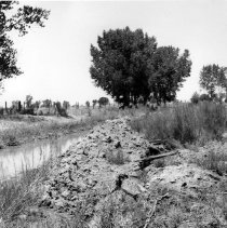 """Image of UNRS-P2008-18-0624 - [Earthquake [Laura E. Mills photos] July 6, 1954]. """"S8a"""" looking north."""
