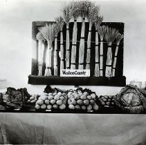 Image of UNRA-P1749-0275 - Agriculture: Washoe County Exhibit - Nevada Potato and Apple Show - Best County Exhibit (1924)