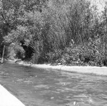 Image of UNRS-P2008-18-1282 - [Misc. Photos- Pertaining to Lower Truckee Canal].
