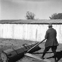 Image of UNRS-P2008-18-3258 - [B_W negatives- Agriculture Related].