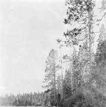 Image of UNRS-P0985-1 - View of Upson Bay, Lake Tahoe; photographic print