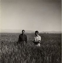 Image of UNRS-P1433-1 - [Photograph of Norman Blitz and Henry Bennett standing in a field, probably at Nile Ranch.]
