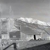 Image of UNRS-P1985-08-00020 - Folder 193. Washoe Valley (neg. 4x5)