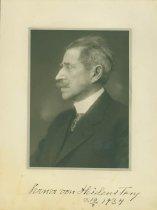 Image of Scandinavian American Portrait collection - Verner von Heidenstam
