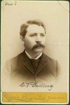 Image of Scandinavian American Portrait collection - C. V. Liedberg