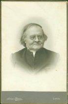 Image of Scandinavian American Portrait collection - Professor Carl Vilhelm Skarstedt