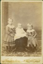 Image of Scandinavian American Portrait collection - Swanberg family