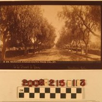 "Image of 2009.215.1.3 - ""B 23.  Marengo Avenue South From Col. St."""