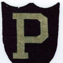 Image of H.09.2009.001.0001 - Patch, Insignia