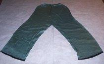Image of light green silk pants