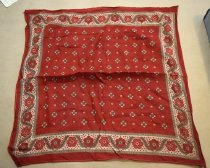 Image of Red bandanna