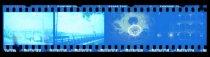 Image of 2016.004.252 - Negative, Film