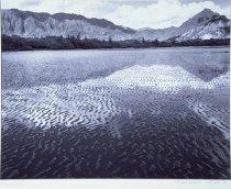Image of Waiakane - Print, Photographic