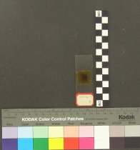 Image of 0968.0072