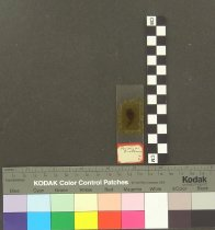 Image of 0968.0073
