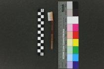 Image of Toothbrush head
