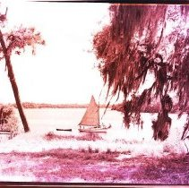 Image of 2004.001.0255 - Sailboat on River
