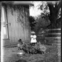 Image of GP1/Box096 - Leah Mary Cox Glass Plate Negatives