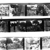 Image of Proof sheet  of  fashion parade images held in a garden. nd