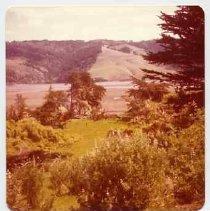 Image of 1982/078/2413 - Neasham, Aubrey