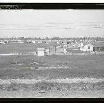 Image of 1985/024/6520 - Hepting, Eugene