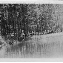 Image of 1996/024/0848 - Dicks, Franz