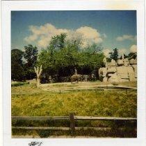 Image of 1996/032/061 - CITY, Sacramento Zoo