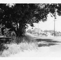 Image of 2002/021/279 - COUNTY, Public Works Agency, Dept. Transportation