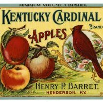Image of 2008/051/253 - James E. Henley Fruit and Vegetable Can and Crate Label Collection