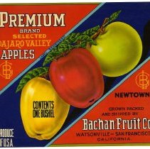 Image of 2008/051/391 - James E. Henley Fruit and Vegetable Can and Crate Label Collection