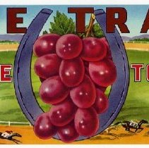 Image of 2008/051/400a-b. - James E. Henley Fruit and Vegetable Can and Crate Label Collection