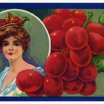 Image of 2008/051/553 - James E. Henley Fruit and Vegetable Can and Crate Label Collection