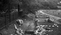 Image of Ravine Garden Construction  1913 - 1985.1.7N