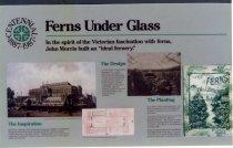 Image of Fernery Centennial Exhibit  1987 - 1987.2.3