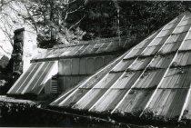 Image of Fernery Roof  1987 - 1987.3.11