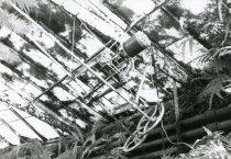 Image of Fernery  Interior Window Mechanism 1987 - 1987.3.21