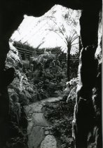 Image of Fernery Interior  1987 - 1987.3.27