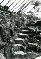 Image of Fernery  Interior Stone Steps 1987 - 1987.3.37