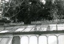 Image of Fernery  Roof Peak 1987 - 1987.3.38