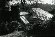 Image of Fernery Roof Closeup  1987 - 1987.3.7